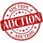 The Grand Lodsworth Auction 2019 Lodsworth Village Hall
